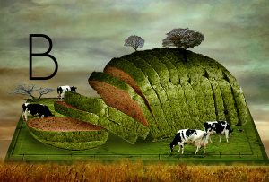 To Βοεϊκό πρόβλημα του Αρχιμήδη | Μέρος Β'