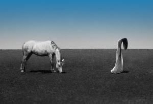 Η μοναξιά είναι ο δρόμος από τον οποίο το πεπρωμένο θέλει να οδηγήσει τον άνθρωπο στον εαυτό του. (Αλ.Πέρσυ)