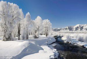 Χειμώνας  (FRIEDRICH HOLDERLIN)