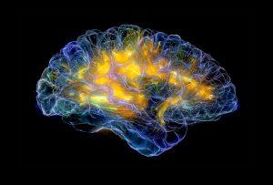 Η Επιστήμη αποδεικνύει πως το συναίσθημα μας καθοδηγεί καλύτερα από τη λογική στη λήψη αποφάσεων. (GIOVANNI FRAZΖΕΤΟ)